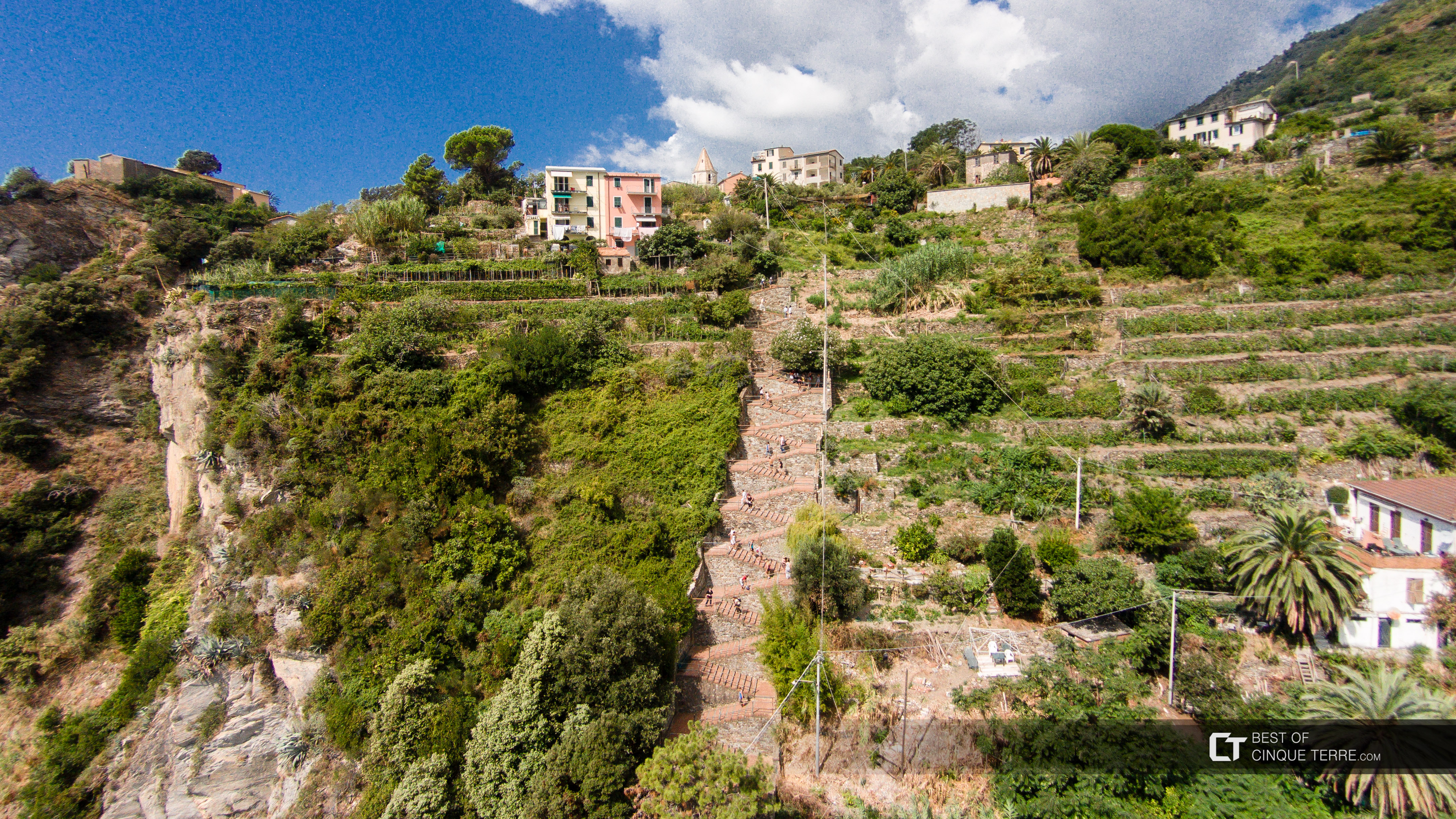 Aerial view of the steps from the station to the village, Corniglia, Cinque Terre, Italy