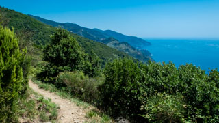 The long route from Monterosso to Vernazza, Trails, Cinque Terre, Italy