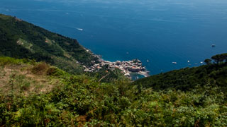 View of Vernazza from the long route Monterosso - Vernazza, Trails, Cinque Terre, Italy