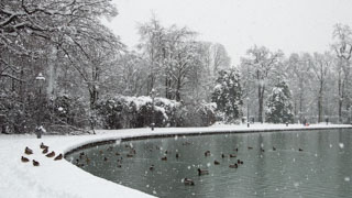 Lake in the Ducal Park in the snow, an unusual occurrence, Parma, Italy
